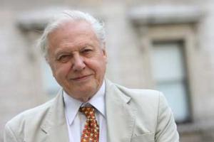 David Attenborough photo from Alan