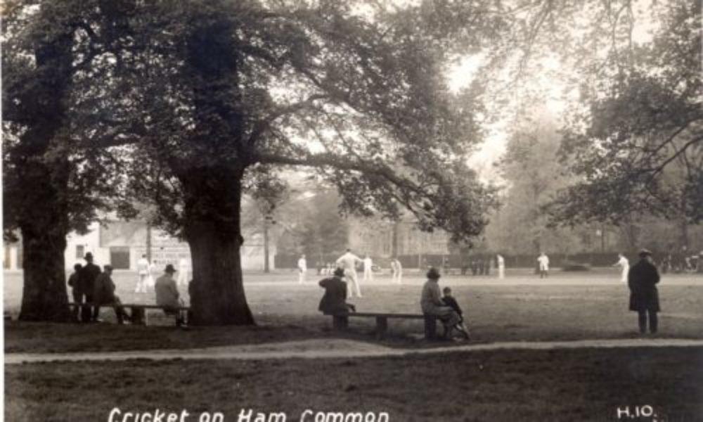 <Cricket on Ham Common